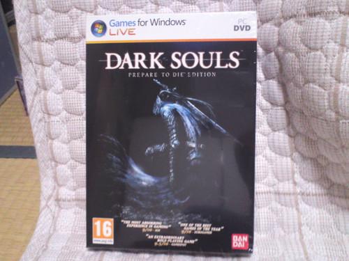 Dark_souls_prepare_to_die_pc11